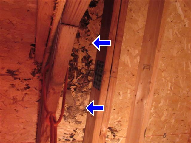 Garage water damage in an Easter Michigan Home Inspection